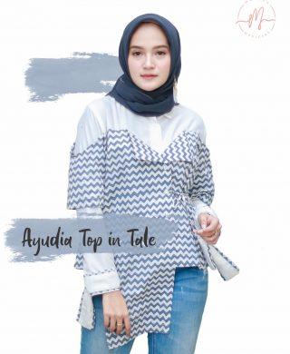 Ayudia Top in Tale